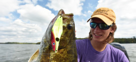 FISHING NEWS: Tricking Trained Fish