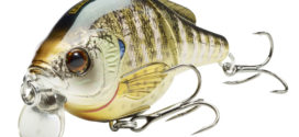 LIVETARGET: The Bluegill Buffet