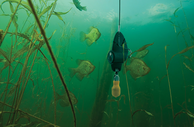 Another Aqua-Vu innovation, the Micro Manager reel assures you'll find and fight fish—not your underwater camera's cable.