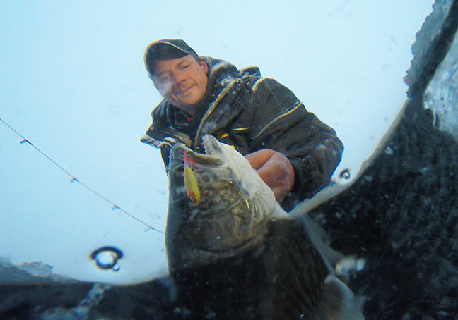 A lake trout's world is wired for eye candy and underwater acoustics